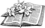 Lesung hochzeit genesis